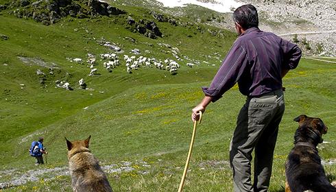 25 maggio: Trip Montagna un turismo capace di futuro