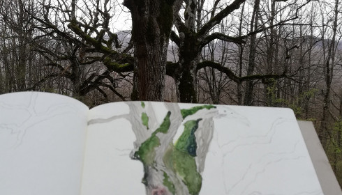 Wildlife Art nella foresta della Val Cervara
